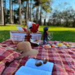 Conheça lugares românticos em Floripa para celebrar o seu amor